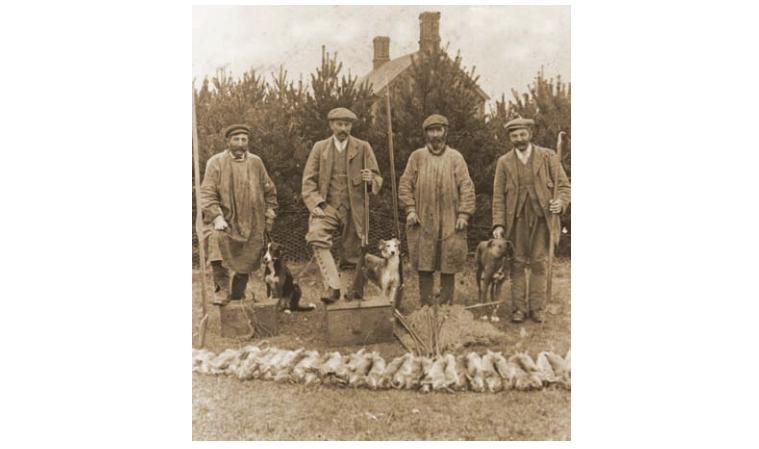 Warreners on the Elveden Estate